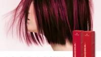 Saç boyası renk kataloğu