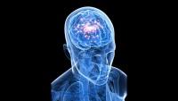 Epilepsi nasıl tedavi edilir ?